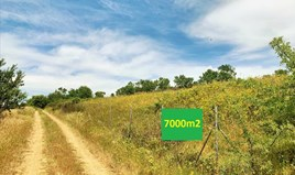 Земельный участок 7000 m² в пригороде Салоник