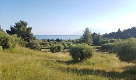 Zemljište 4500 m² na Kasandri (Halkidiki)