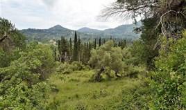 Arsa 9000 m² Korfu'da