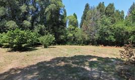 Land 1000 m² in Corfu