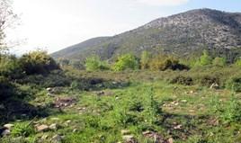 հողատարածք 4500 m² Թասոս կղզում