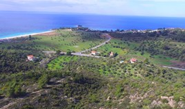 Zemljište 8501 m² na Sitoniji (Halkidiki)