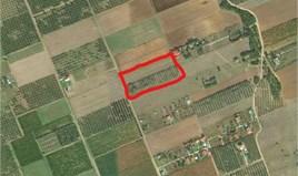 Парцел 8750 m² в Халкидики