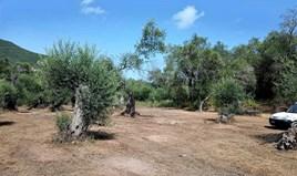 Arsa 4643 m² Korfu'da