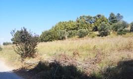 Zemljište 3700 m² na Kasandri (Halkidiki)