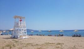 Zemljište 8687 m² na Sitoniji (Halkidiki)