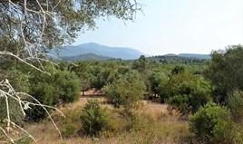 Land 30000 m² in Corfu