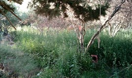 Land 500 m² in Athen