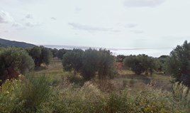 Zemljište 4052 m² na Kasandri (Halkidiki)
