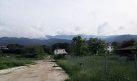 أرض 1001 m² في ثاسوس