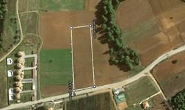 Zemljište 8150 m² na Kasandri (Halkidiki)