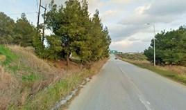 Zemljište 2500 m² na Kasandri (Halkidiki)