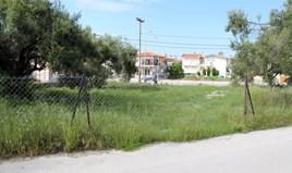 Land 1000 m² auf Kassandra (Chalkidiki)