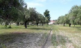 Zemljište 2900 m² na Kasandri (Halkidiki)