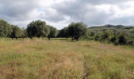 Zemljište 2700 m² na Kasandri (Halkidiki)