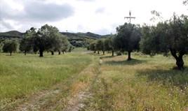 Zemljište 5500 m² na Kasandri (Halkidiki)