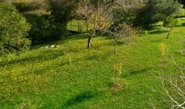 أرض 5000 m² في كورفو