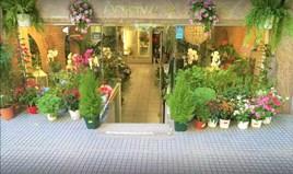 商用 67 m² 位于塞萨洛尼基