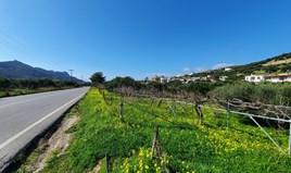 Земельна ділянка 1320 m² на Криті