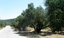 Land 4100 m² in Corfu