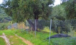 أرض 3000 m² في كورفو