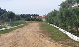 Zemljište 2000 m² na Kasandri (Halkidiki)