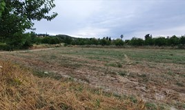 Zemljište 3000 m² na Kasandri (Halkidiki)
