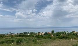 Zemljište 12000 m² na Kasandri (Halkidiki)