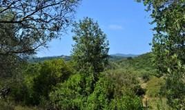 Land 2650 m² in Corfu