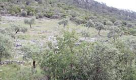 أرض 6585 m² في ثاسوس