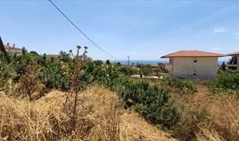 Земельна ділянка 1245 m² на Сітонії (Халкідіки)