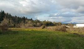 Land 3379 m² in Corfu