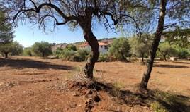Land 3216 m² auf Sithonia (Chalkidiki)