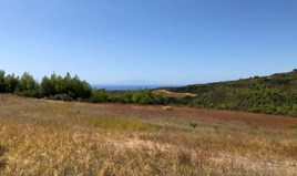 Zemljište 22902 m² na Kasandri (Halkidiki)
