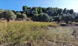 Zemljište 9400 m² na Kasandri (Halkidiki)