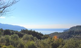 Land 8841 m² in Corfu