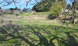Land 1670 m² in Corfu