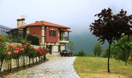 Detached house 118 m² in Chalkidiki