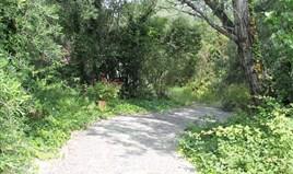 Land 22000 m² in Corfu