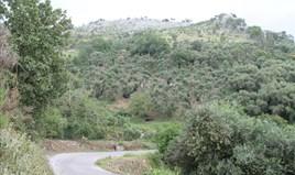 Земельна ділянка 7000 m² на о. Корфу
