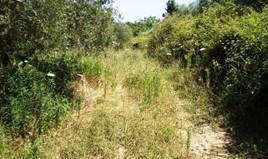 Zemljište 12250 m² na Kasandri (Halkidiki)