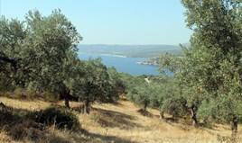 Land 10000 m² in Athos, Chalkidiki