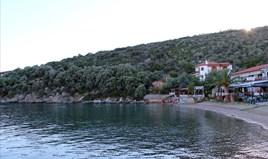 Land 10300 m² in Athos, Chalkidiki