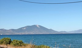 Land 875 m² on the Euboea island