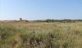 Γή 30000 m² στην Κέρκυρα