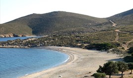 Land 28000 m² on the Euboea island