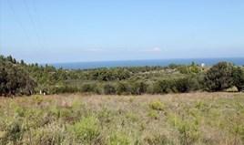 Земельный участок 22500 m² на Кассандре (Халкидики)