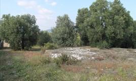 Земельна ділянка 3659 m² на Сітонії (Халкідіки)
