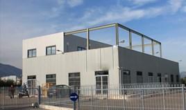 Business 774 m² in Attica