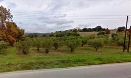 Zemljište 5800 m² na Sitoniji (Halkidiki)